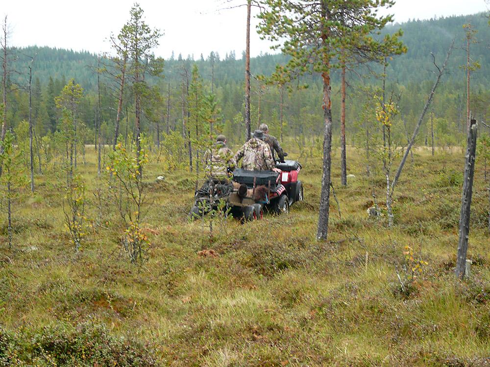ATV i bjørneterrreng