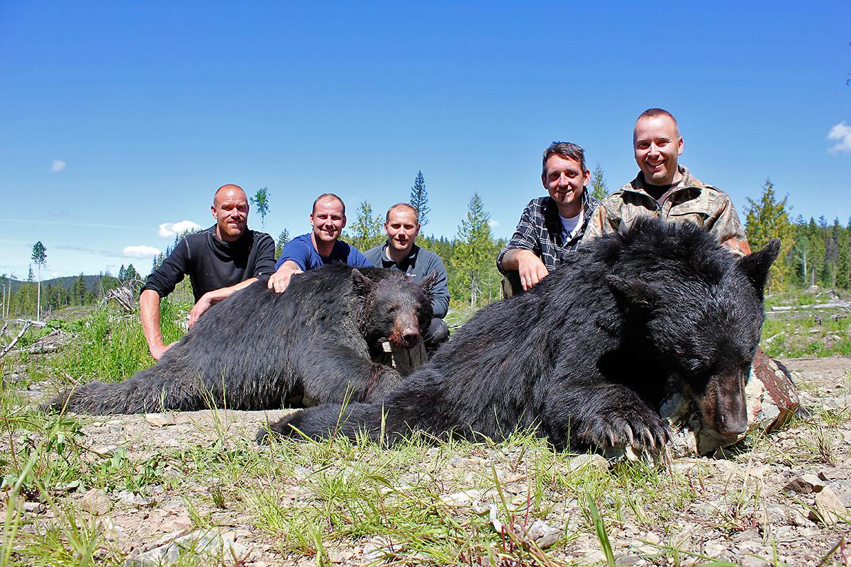 Svartbjørnjakt i Canada